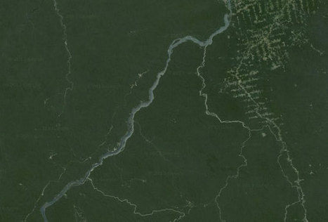 Brazil's planned Tapajós dams would increase Amazon deforestation by 1M ha - Mongabay.com   ha   Scoop.it