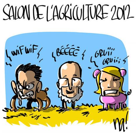 Salon de l'agriculture 2012   TAHITI Le Mag   Scoop.it