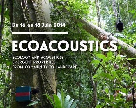 Ecology and Acoustics - Ecologie et Acoustique | DESARTSONNANTS - CRÉATION SONORE ET ENVIRONNEMENT - ENVIRONMENTAL SOUND ART - PAYSAGES ET ECOLOGIE SONORE | Scoop.it