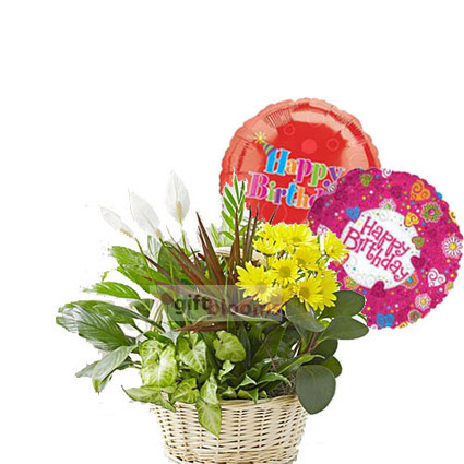 Bright and Cheerful Balloon delivery by giftblooms | Balloon Bouquets Delivery | Scoop.it