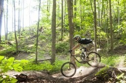 Traverse City is a Mountain Biker's Paradise | Pure Michigan Blog | Traverse City Businesses | Scoop.it