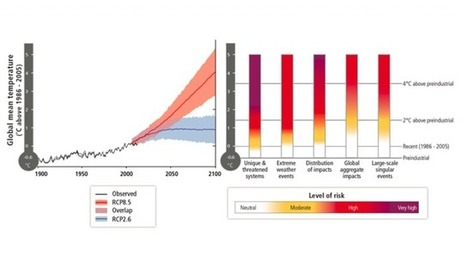 """7 Key Findings From the New UN Climate Science Report 