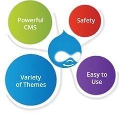 Website Designing Services In India,Web Design India   Web Development Company In India   Scoop.it