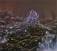 SETI - Le polymorphisme du monde   Beyond the cave wall   Scoop.it