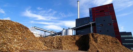 Bois énergie : complémentarité et compétition entre les acteurs de la filière bois   Agr'energie   Scoop.it