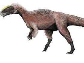 Scoperto il fossile di un dinosauro piumato gigante | Browsing around | Scoop.it