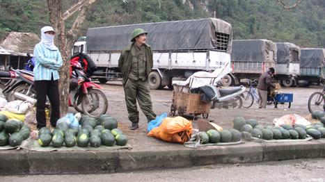 Bầm dập dưa hấu xuất khẩu - Tiền Phong Online   Mực In   Scoop.it