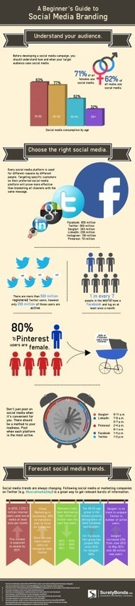 Social Media Branding And Marketing: Beginner's Guide - Infographic | Social Media Marketing | Scoop.it