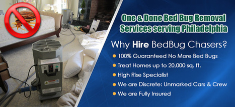 bed bug treatment | bed bug treatment | Scoop.it