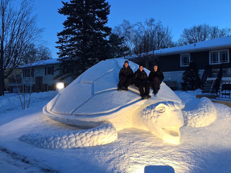 Every Year, These 3 Brothers Make A Giant Snow Sculpture In Their Front Yard | Food for Pets | Scoop.it
