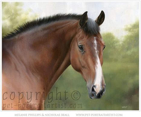 Horse Portraits - Portraits in oils by Nicholas Beall   Painting #Horse Portraits in Pastel   Scoop.it