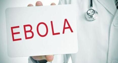 Latest Ebola News -- treatment for the deadly virus on the block | Virology News | Scoop.it