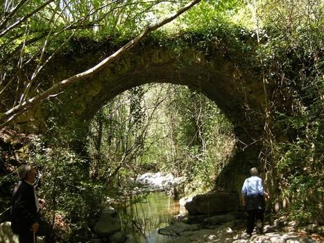 El Montseny vol ampliar els límits de la Reserva de la Biosfera | #territori | Scoop.it
