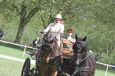 Windsor: Amely von Buchholtz leads after dressage - HoefNet | Carriage Driving Radio Show | Scoop.it