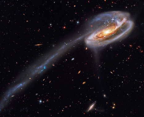 Tadpole  Galaxies Offer Snapshots of the Milky Way s Youth | Biosciencia News | Scoop.it