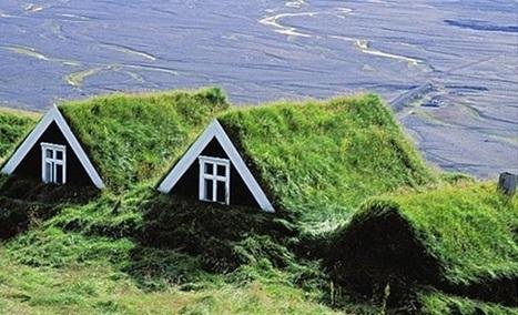 Green roof: i tetti verdi più belli e bizzarri del mondo | Efficienza Energetica degli Edifici - soluzioni | Scoop.it