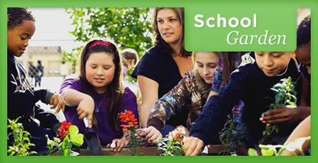 School Garden Checklist | Gardening Life | Scoop.it