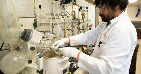 As biotech stocks tumble, analysts say look to earnings - CNBC.com | Corporate Finance for Innovative Companies | Scoop.it