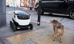 Robochops – on the road with a food-delivery droid | Society, Culture and Ethics | Scoop.it