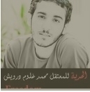 BahTweetyGirl's XLTweet: Mohammad Darwish | Human Rights and the Will to be free | Scoop.it