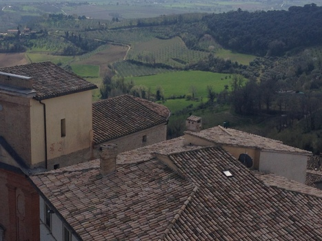 Voices From The Vineyard: Ten Winemakers From Montefalco - Forbes | Umbria and Tuscany | Scoop.it