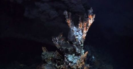 The Ancestor Of All Living Things: Scientists Uncover The Last Common Ancestor of Life on Earth | Aux origines | Scoop.it