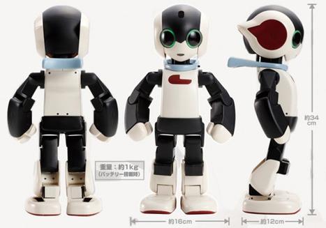 Giappone, arrivano i robot traduttori per i turisti - Blog di Lifestyle | NOTIZIE DAL MONDO DELLA TRADUZIONE | Scoop.it