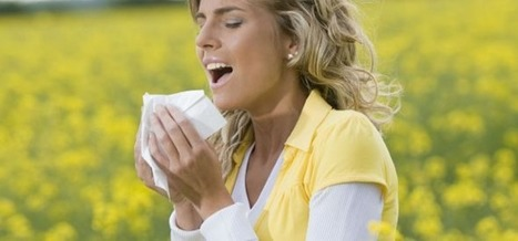 Spring Allergies Abound – 6 Tips to Stop the Sneezing | Patron Health | Scoop.it