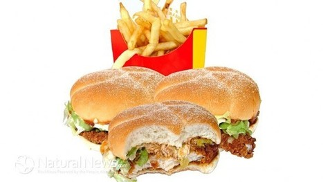 McDonald's Sales Rapidly Decline As Americans Reject Fake Food - Natural News Blogs | Christian Querou | Scoop.it