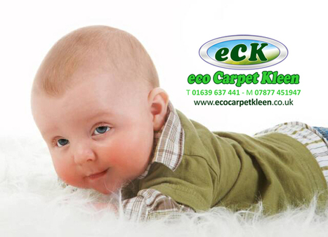 Carpet Cleaning Neath | Upholstery Cleaning Neath | Leather Cleaning Neath | Sofa Cleaning Neath | Rug Cleaning Neath | Neath Carpet Cleaners | Neath Upholstery Cleaners | Neath Sofa Cleaners | Car... | Carpet & Upholstery Cleaning | Neath | Swansea | Port Talbot | Eco Carpet Kleen | Scoop.it