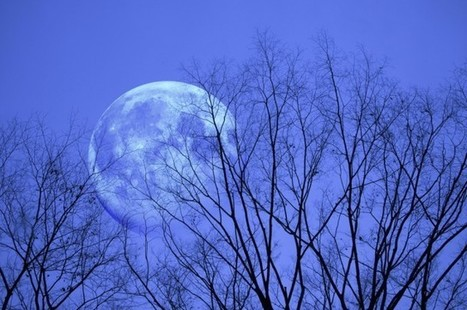 "There's A ""Blue Moon"" This Friday - But What Does That Mean? 