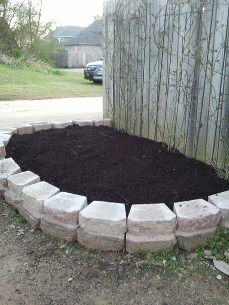Springtime in Alabama - Prime Rose Planting Weather | Annie Haven | Haven Brand | Scoop.it