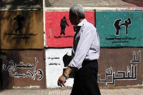 Prosecutor orders forensic reports for sexual harassment victims | Égypt-actus | Scoop.it