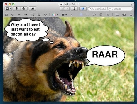 Add Speech Bubbles to Pictures with Preview in Mac OS X | All Things Mac | Scoop.it