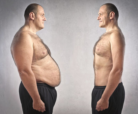 6 Proven Ways to Lose Belly Fat (No. 2 and 3 are Best) | weight loss program reviews | Scoop.it
