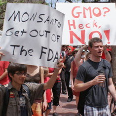 Can We Trust Monsanto with Our Food?: Scientific American | GM Foods | Scoop.it