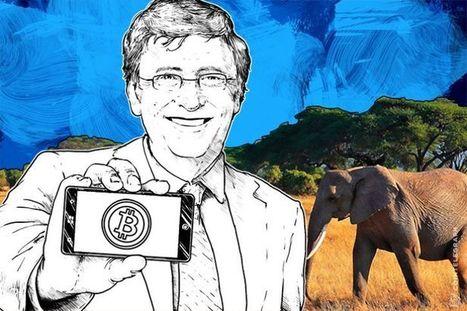 Bill & Melinda Gates Foundation Promotes Bitcoin in Kenya | Peer2Politics | Scoop.it