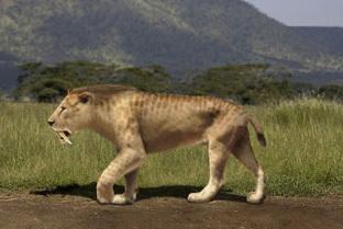 Quiz : êtes-vous le roi des animaux ? | Sélection jeux sérieux Fête mondiale du jeu 31 mai 2014 | Scoop.it