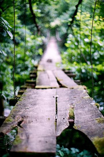 sarahspellitout: We all have our bridge to... | Bridge to Terabithia | Scoop.it
