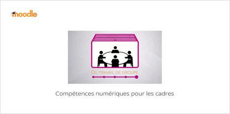 Compétences numériques pour les cadres | Mooc Francophone | E-pedagogie, apprentissages en numérique | Scoop.it