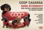 ULTERIORI 12O MILA EURO DI CONVENIENZA | Coop in Friuli | Scoop.it