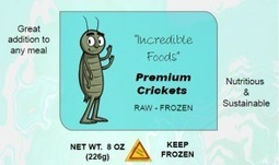 Edible Insects and Consumer Litigation | Entomophagy: Edible Insects and the Future of Food | Scoop.it