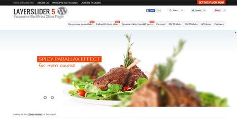 Full Featured Responsive LayerSlider For Wordpress - Wpdil | wordpress news,themes & tutorial | Scoop.it