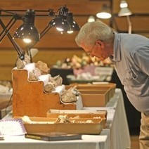 Bethel gem show in July to feature gold panning, 28-inch crystal as door prize - Bangor Daily News | GEMSTONES | Scoop.it