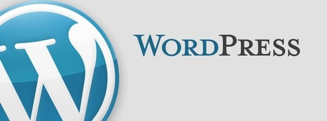 How to Choose a WordPress Theme Wisely - Tech Boss Designs | Web Design | Scoop.it
