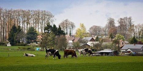 Le Département soutient l'élevage en Seine-Maritime - Conseil départemental 76 | Revue de presse sur l'agriculture, l'environnement, le territoire, l'agroalimentaire en Normandie | Scoop.it