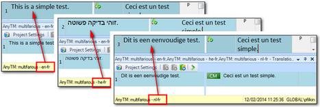 AnyTM... or SuperTM!   Translation, Localization & Technology   Scoop.it