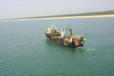 Quand Google Earth permet de surveiller la pêche illégale | Insolite DD | Scoop.it
