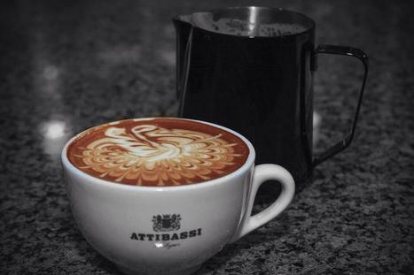 the master | Attibassi Caffe Benelux BV ®  www.attibassi.nl | Scoop.it