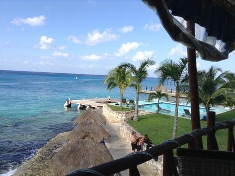 Scuba #dive in #Cozumel | Tank's ocean grotto | Scoop.it